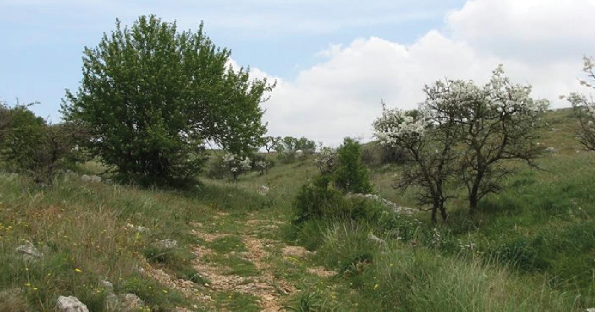 escursione passeggiata legambiente